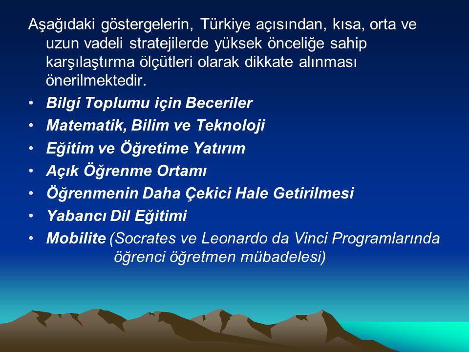 Aşağıdaki göstergelerin, Türkiye açısından, kısa, orta ve uzun vadeli stratejilerde yüksek önceliğe sahip karşılaştırma ölçütleri olarak dikkate alınması önerilmektedir.