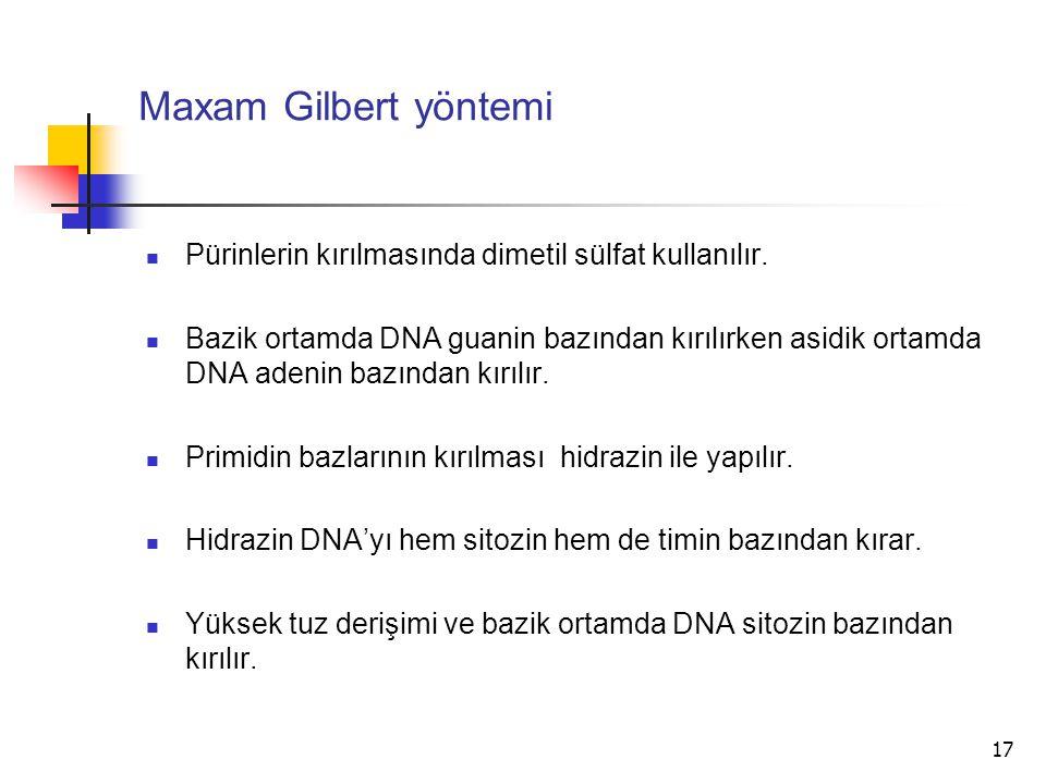 Maxam Gilbert yöntemi Pürinlerin kırılmasında dimetil sülfat kullanılır.