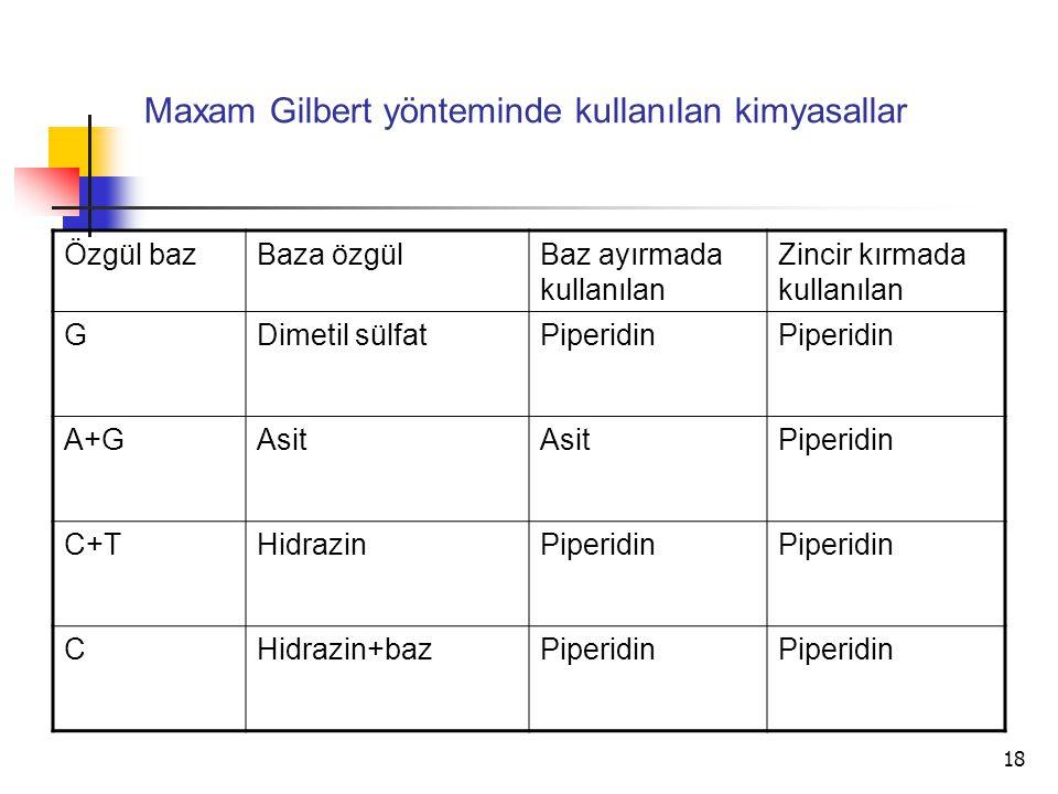 Maxam Gilbert yönteminde kullanılan kimyasallar