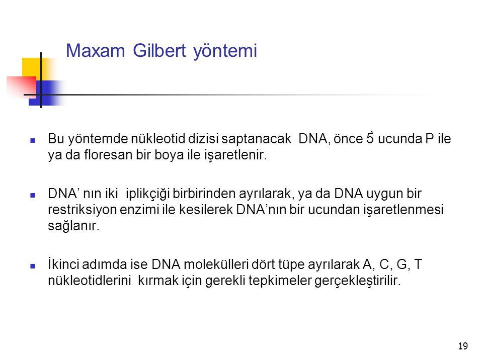 Maxam Gilbert yöntemi Bu yöntemde nükleotid dizisi saptanacak DNA, önce 5̀ ucunda P ile ya da floresan bir boya ile işaretlenir.