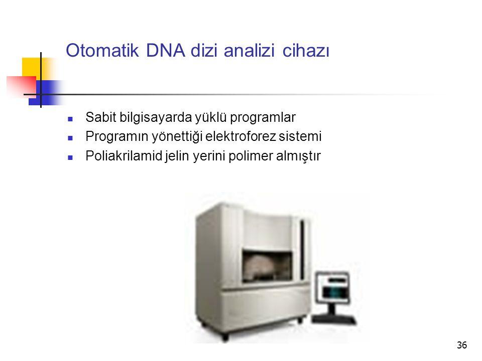 Otomatik DNA dizi analizi cihazı