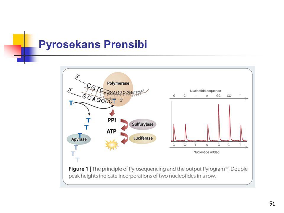 Pyrosekans Prensibi