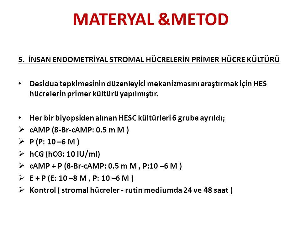 MATERYAL &METOD 5. İNSAN ENDOMETRİYAL STROMAL HÜCRELERİN PRİMER HÜCRE KÜLTÜRÜ.