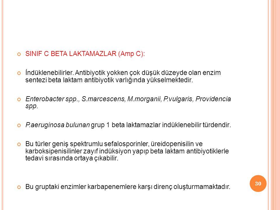 SINIF C BETA LAKTAMAZLAR (Amp C):