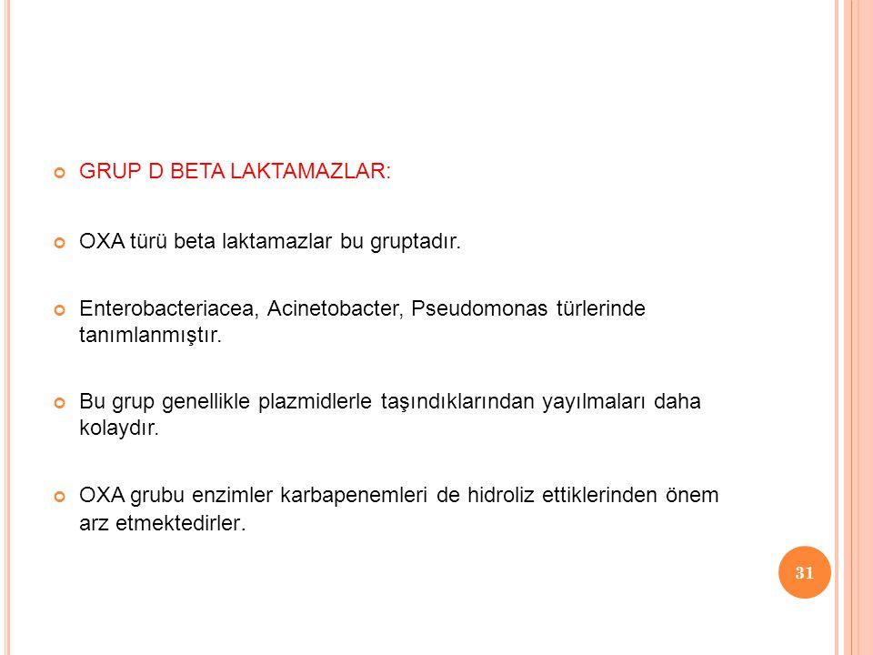 GRUP D BETA LAKTAMAZLAR: