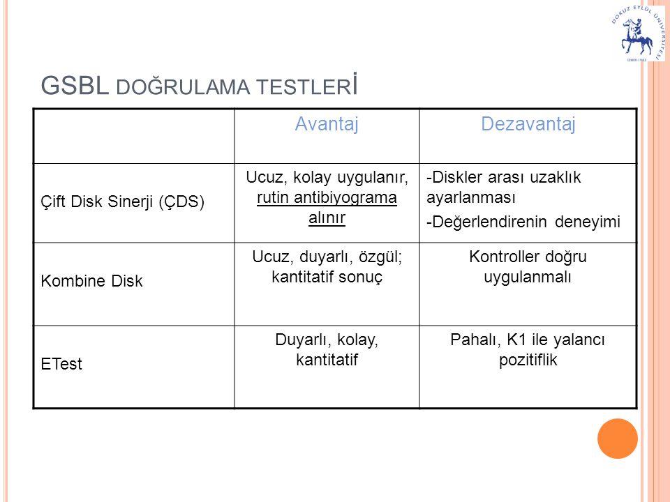 GSBL doğrulama testlerİ