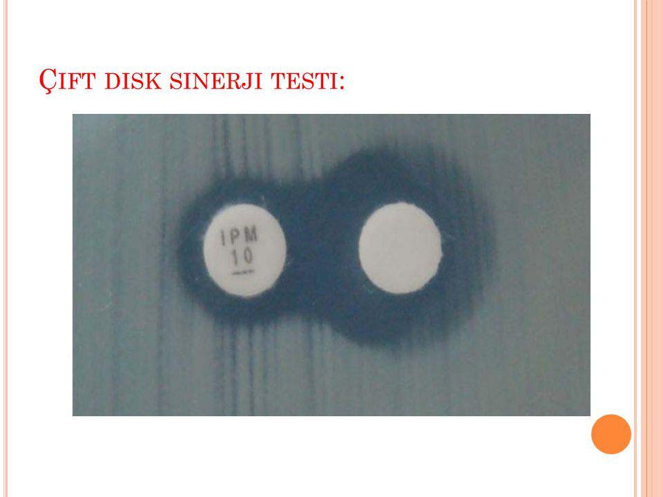 Çift disk sinerji testi: