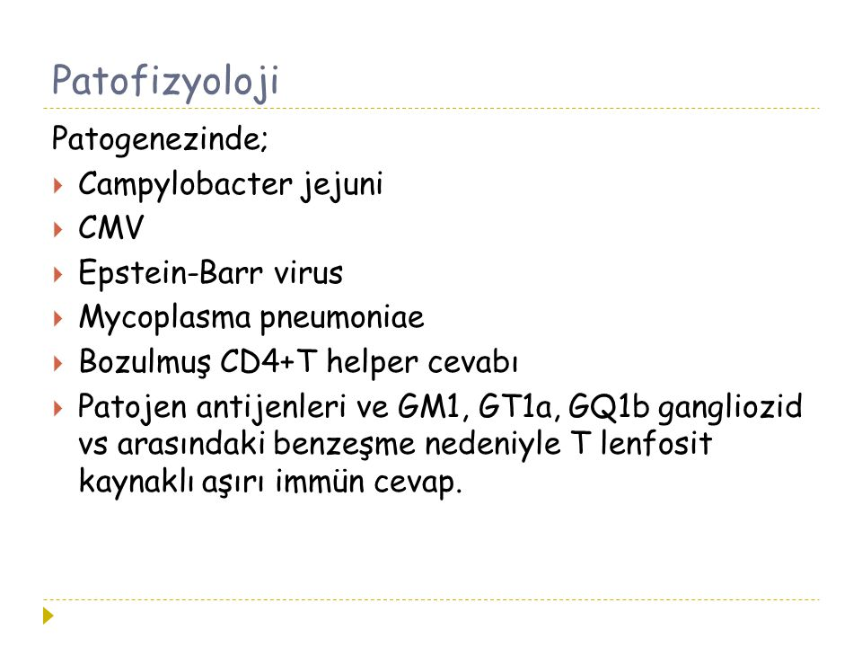 Patofizyoloji Patogenezinde; Campylobacter jejuni CMV