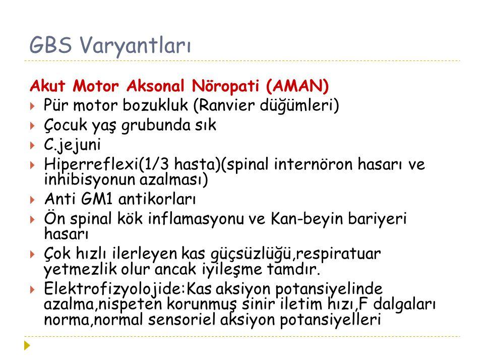 GBS Varyantları Akut Motor Aksonal Nöropati (AMAN)