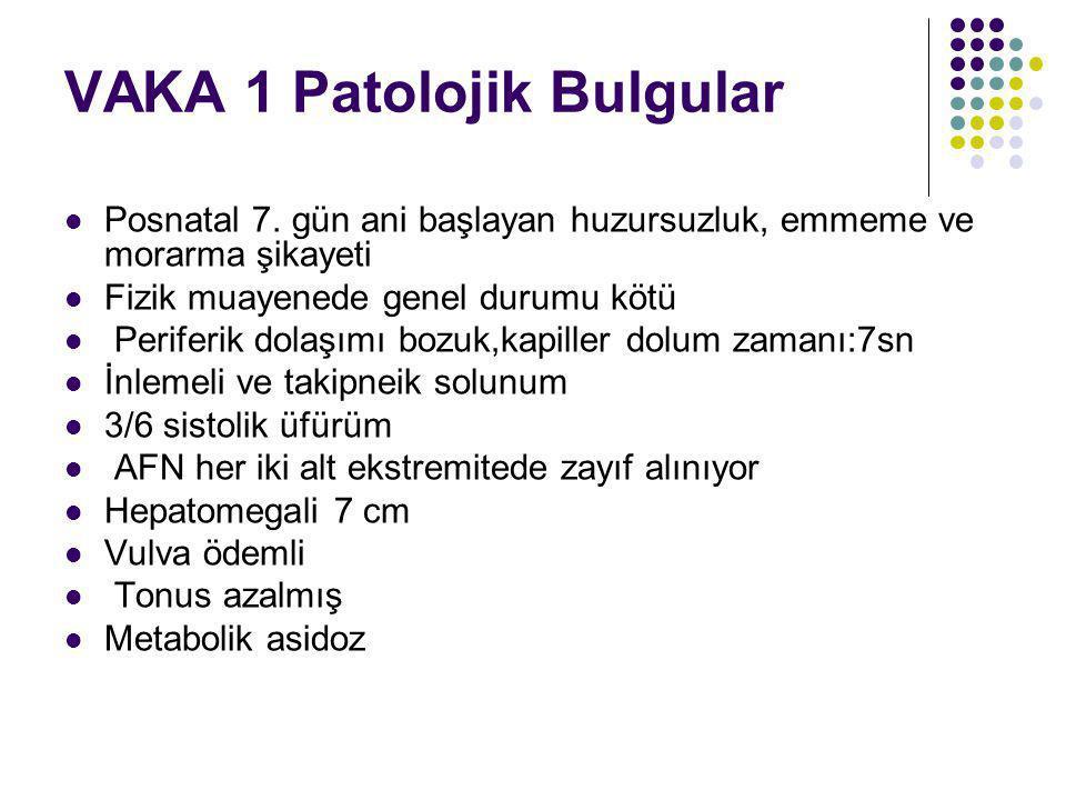 VAKA 1 Patolojik Bulgular