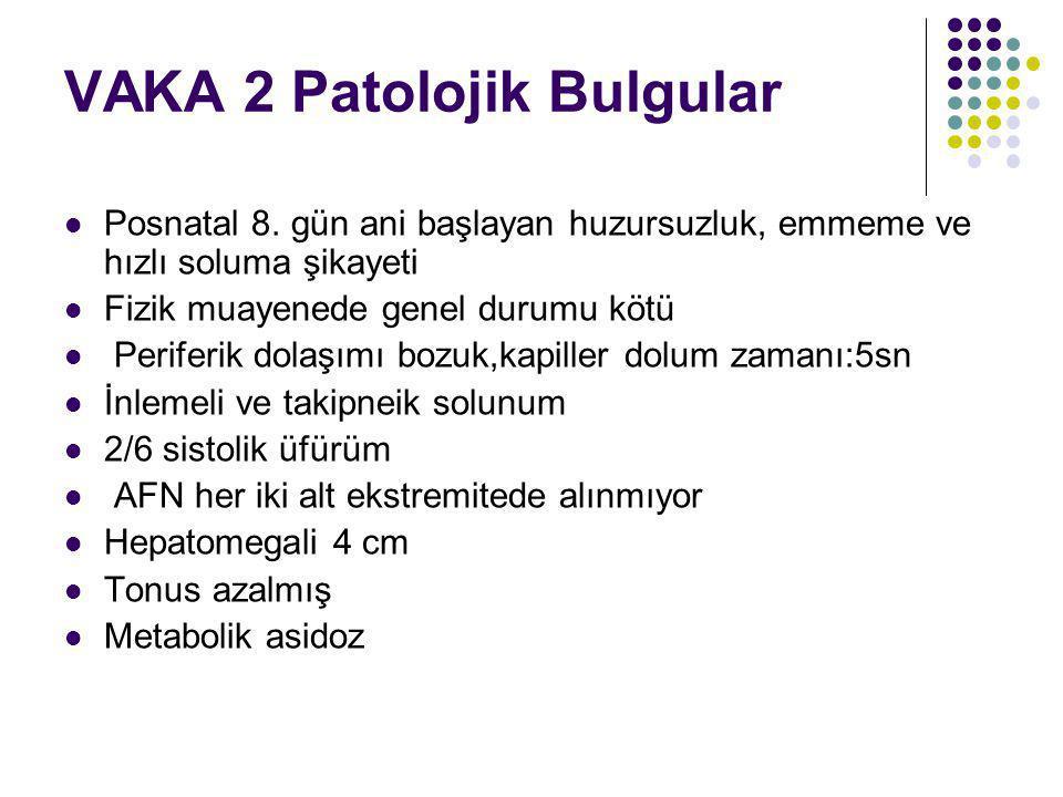 VAKA 2 Patolojik Bulgular