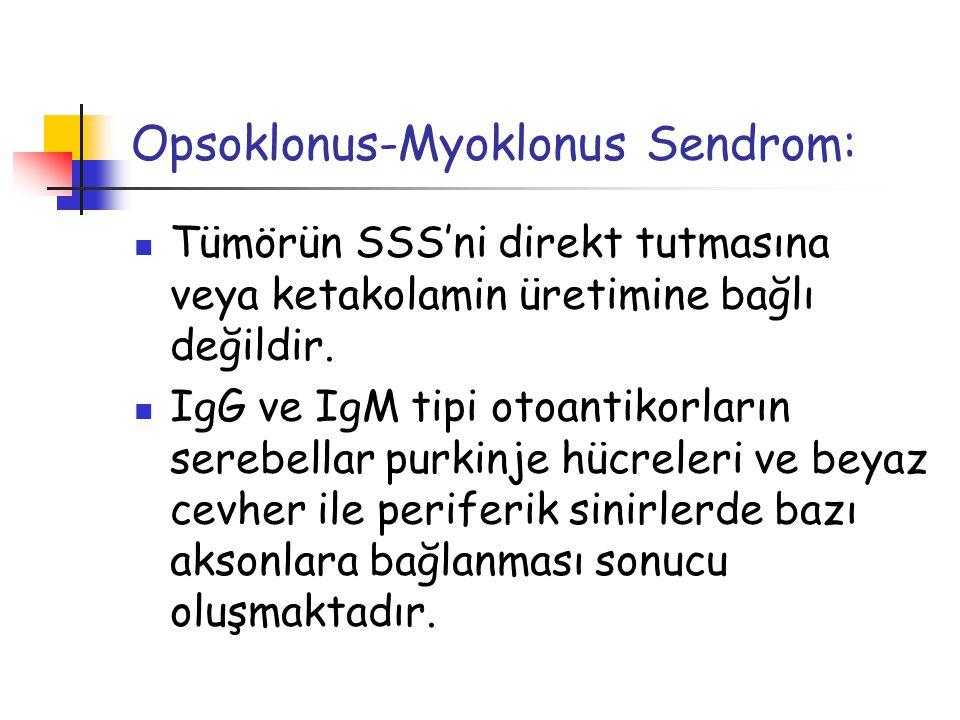 Opsoklonus-Myoklonus Sendrom: