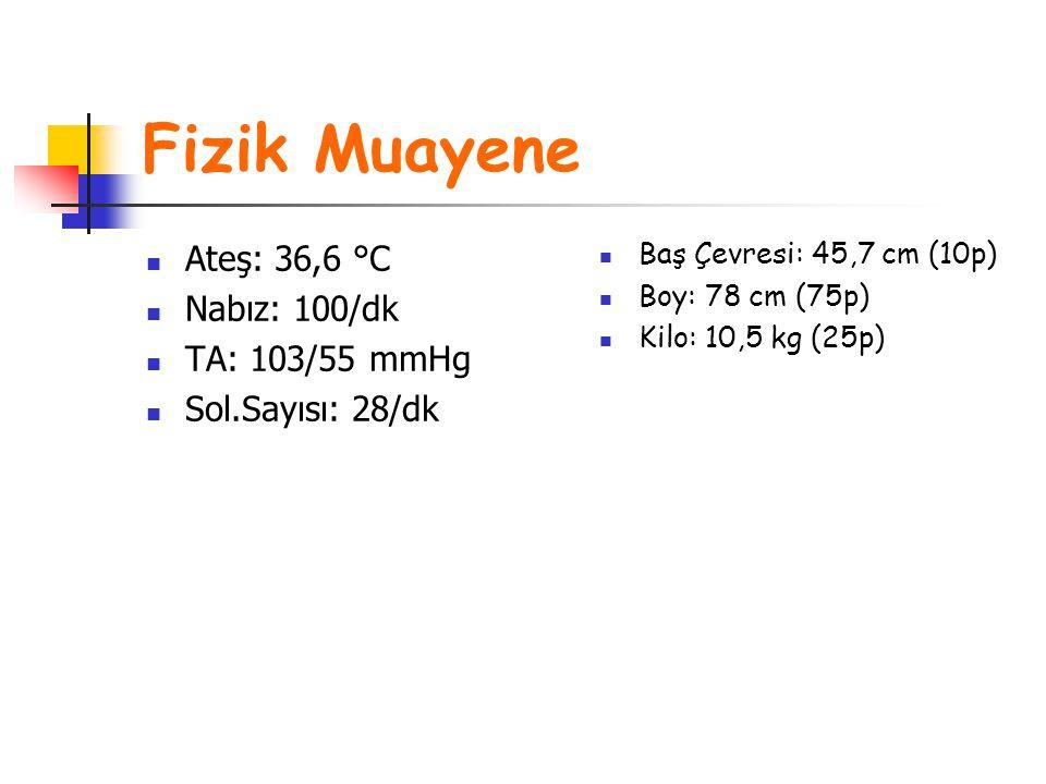 Fizik Muayene Ateş: 36,6 °C Nabız: 100/dk TA: 103/55 mmHg