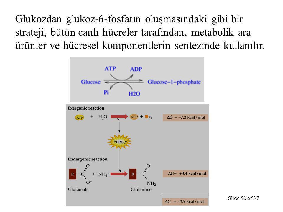 Glukozdan glukoz-6-fosfatın oluşmasındaki gibi bir strateji, bütün canlı hücreler tarafından, metabolik ara ürünler ve hücresel komponentlerin sentezinde kullanılır.