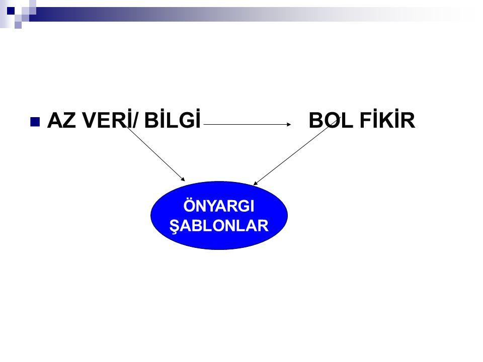 AZ VERİ/ BİLGİ BOL FİKİR