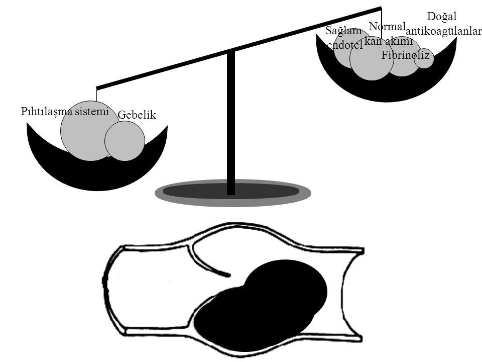Doğal antikoagülanlar Normal Sağlam kan akımı endotel Fibrinoliz