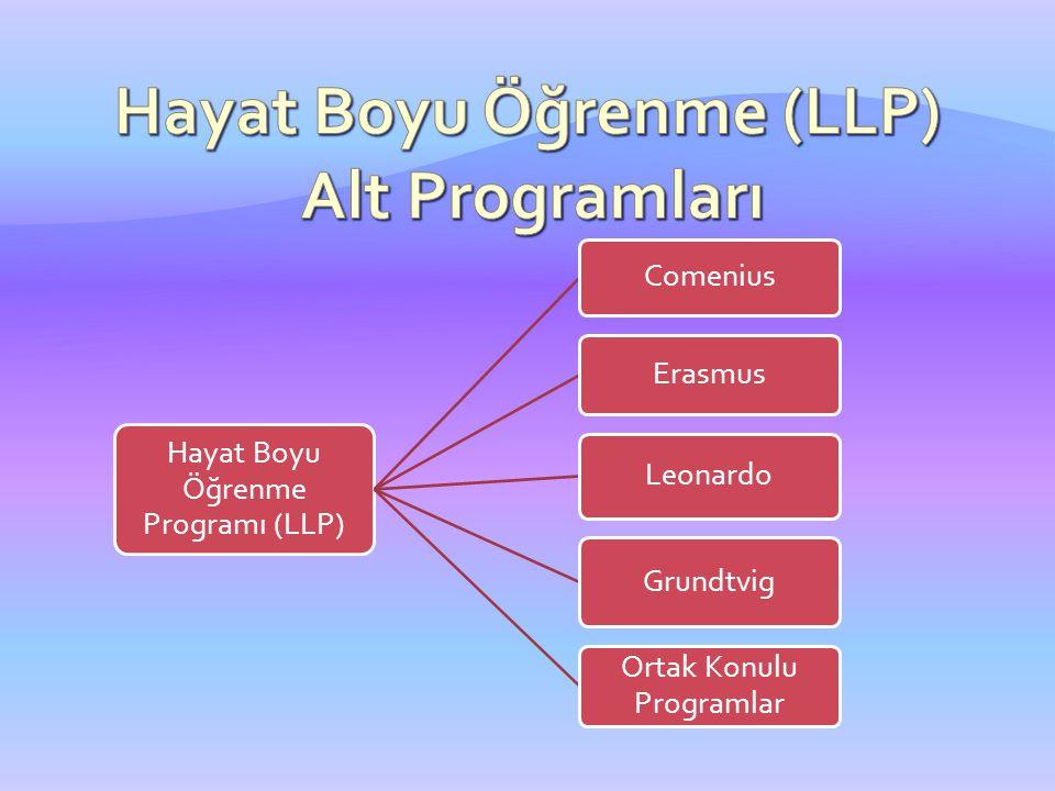 Hayat Boyu Öğrenme (LLP) Alt Programları