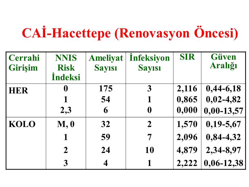 CAİ-Hacettepe (Renovasyon Öncesi)