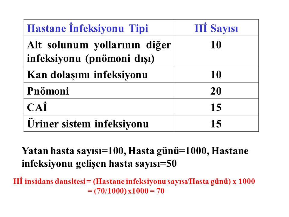 Hastane İnfeksiyonu Tipi Hİ Sayısı