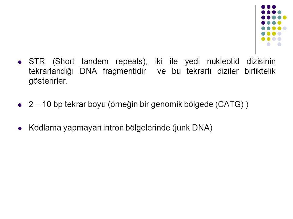 STR (Short tandem repeats), iki ile yedi nukleotid dizisinin tekrarlandığı DNA fragmentidir ve bu tekrarlı diziler birliktelik gösterirler.