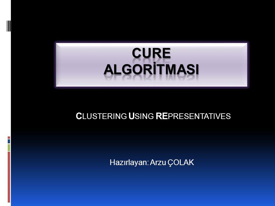 CLUSTERING USING REPRESENTATIVES Hazırlayan: Arzu ÇOLAK