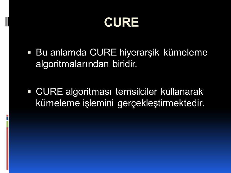 CURE Bu anlamda CURE hiyerarşik kümeleme algoritmalarından biridir.