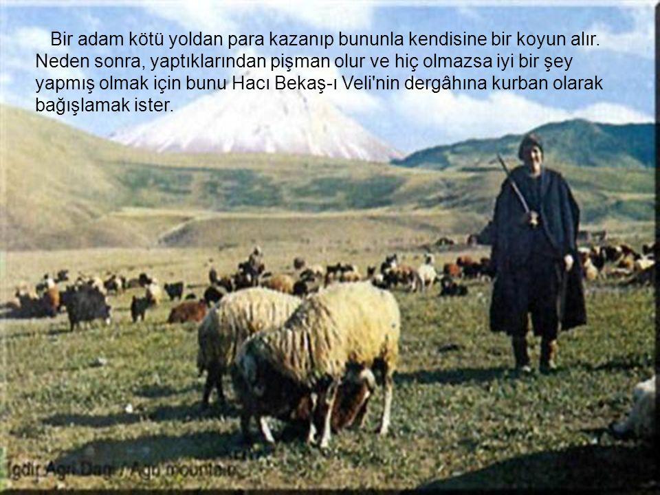 Bir adam kötü yoldan para kazanıp bununla kendisine bir koyun alır