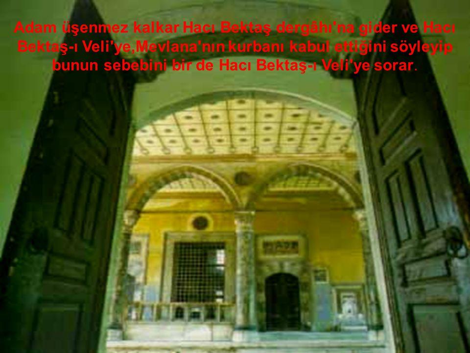 Adam üşenmez kalkar Hacı Bektaş dergâhı na gider ve Hacı Bektaş-ı Veli ye,Mevlana nın kurbanı kabul ettiğini söyleyip bunun sebebini bir de Hacı Bektaş-ı Veli ye sorar.