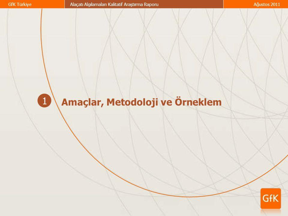 1 Amaçlar, Metodoloji ve Örneklem