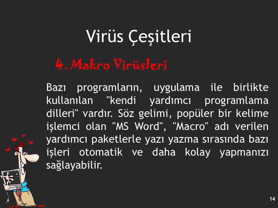 Virüs Çeşitleri 4. Makro Virüsleri