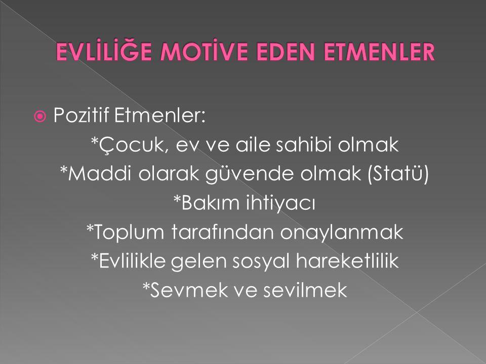 EVLİLİĞE MOTİVE EDEN ETMENLER