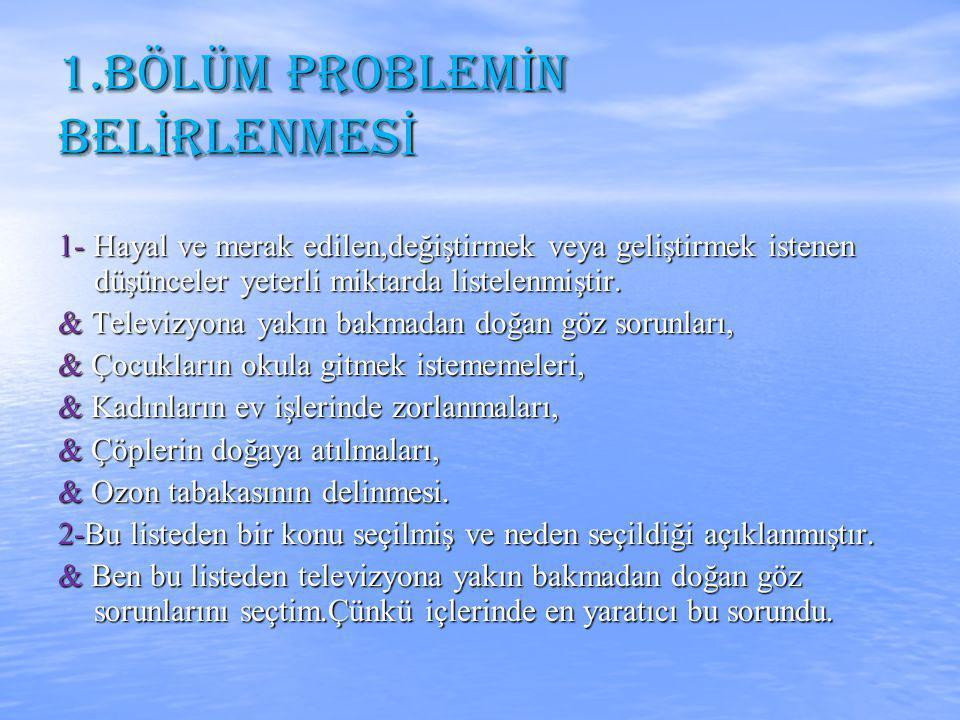 1.BÖLÜM PROBLEMİN BELİRLENMESİ