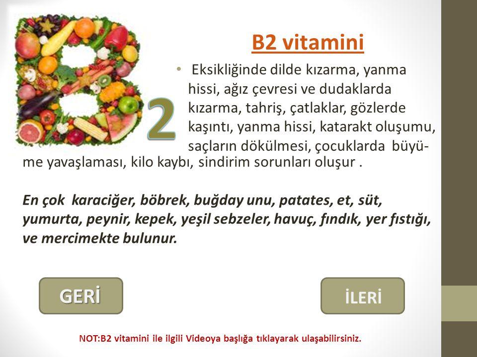B2 vitamini