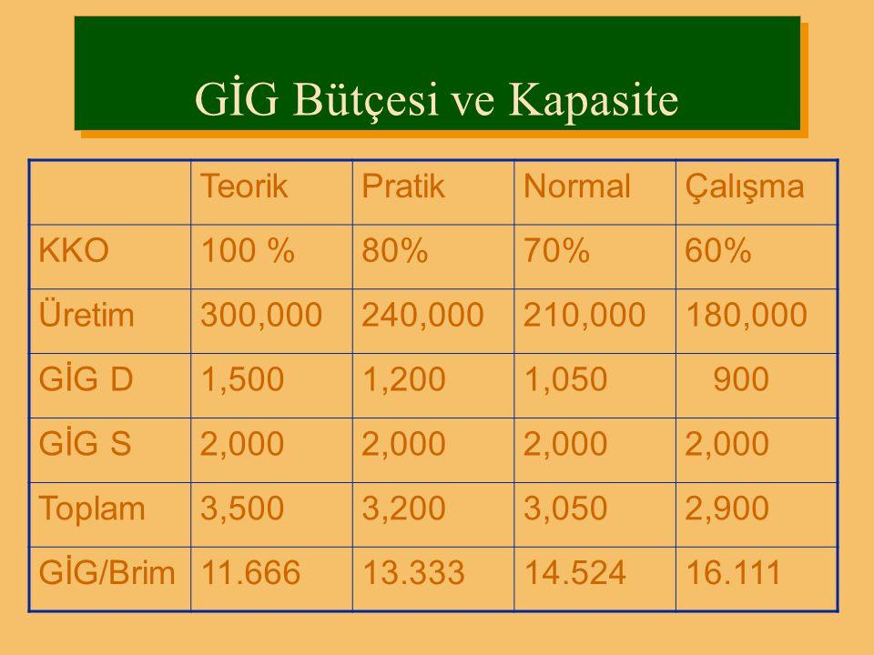 GİG Bütçesi ve Kapasite