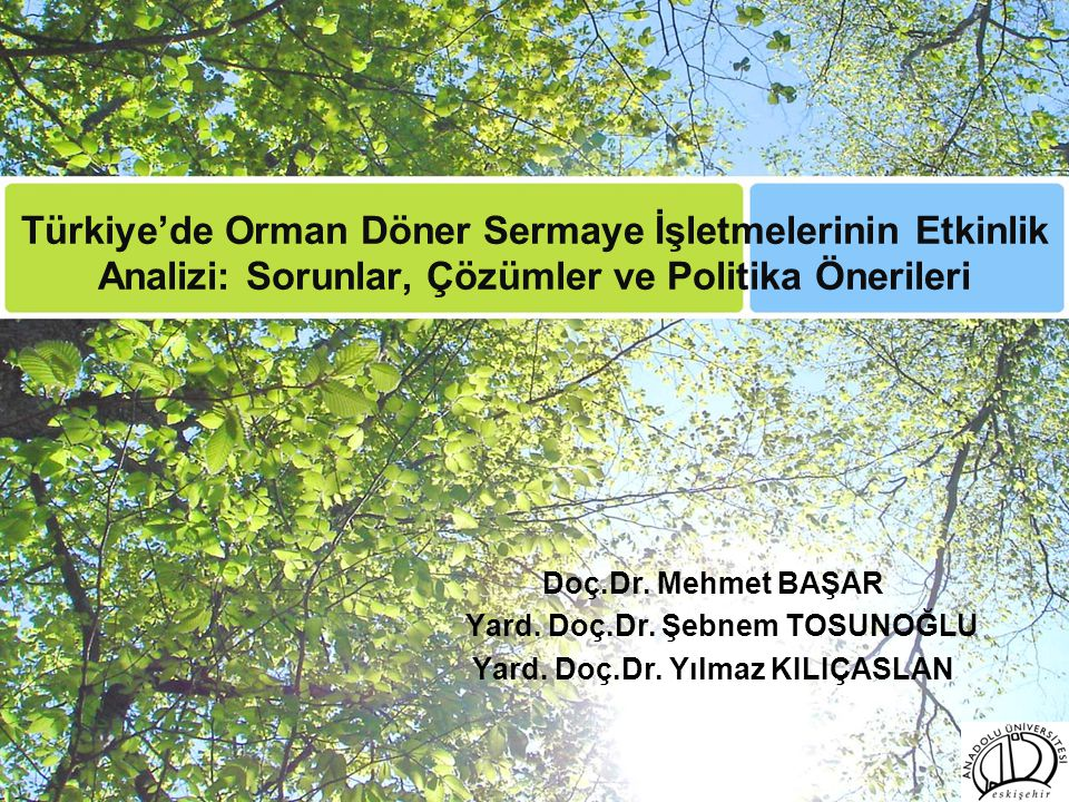 Türkiye'de Orman Döner Sermaye İşletmelerinin Etkinlik Analizi: Sorunlar, Çözümler ve Politika Önerileri