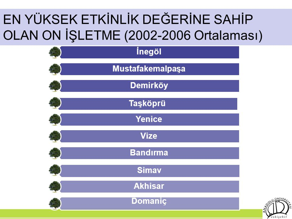 EN YÜKSEK ETKİNLİK DEĞERİNE SAHİP OLAN ON İŞLETME (2002-2006 Ortalaması)