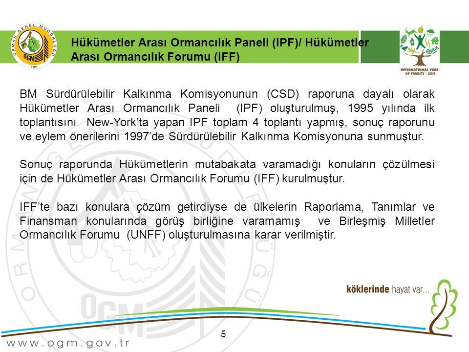 Hükümetler Arası Ormancılık Paneli (IPF)/ Hükümetler Arası Ormancılık Forumu (IFF)