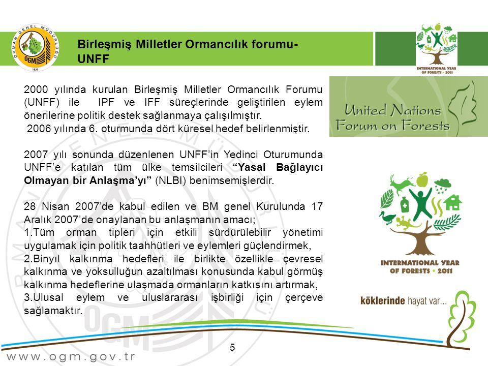 Birleşmiş Milletler Ormancılık forumu- UNFF