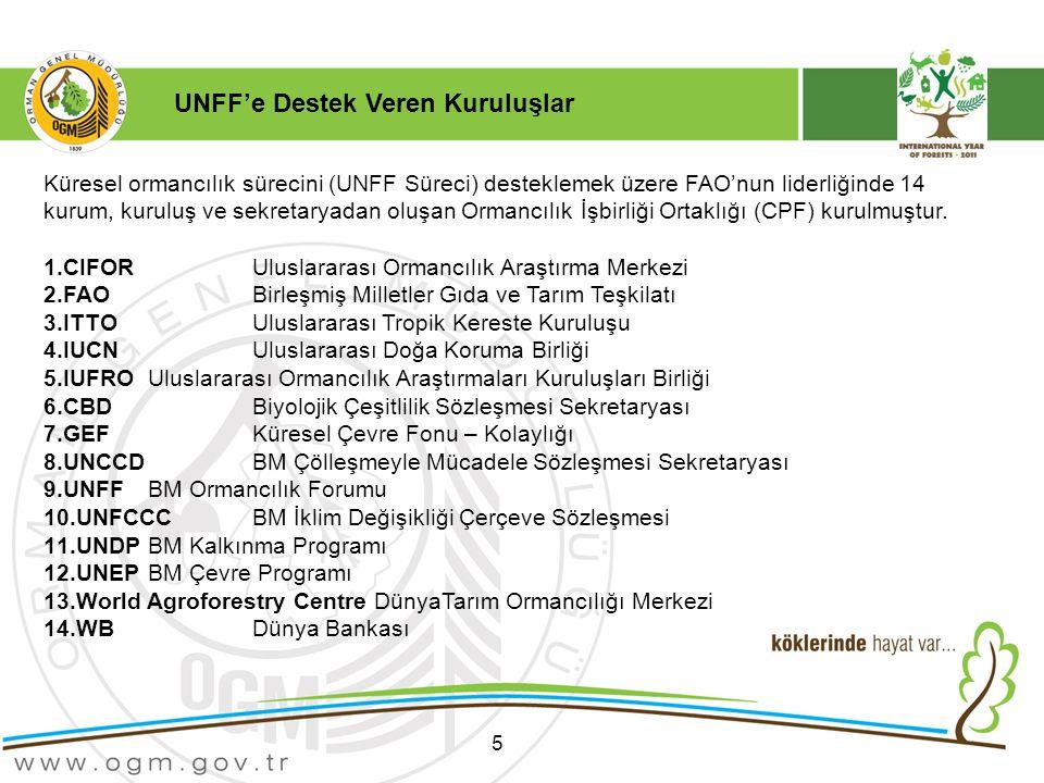 UNFF'e Destek Veren Kuruluşlar