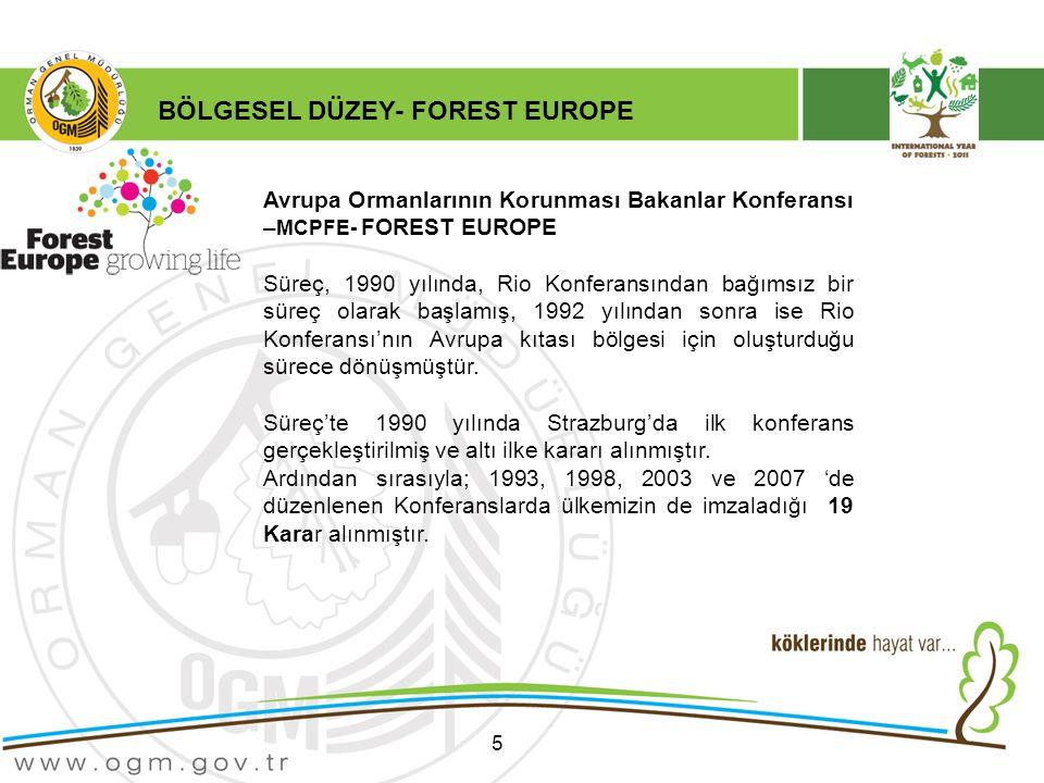 BÖLGESEL DÜZEY- FOREST EUROPE