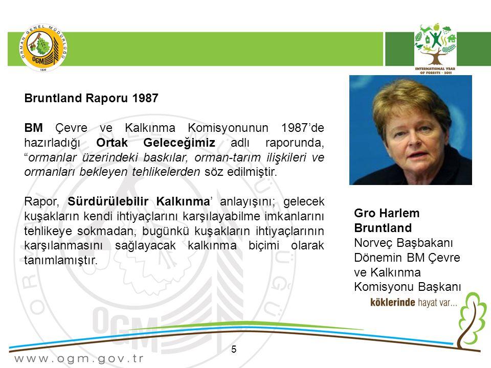 Dönemin BM Çevre ve Kalkınma Komisyonu Başkanı