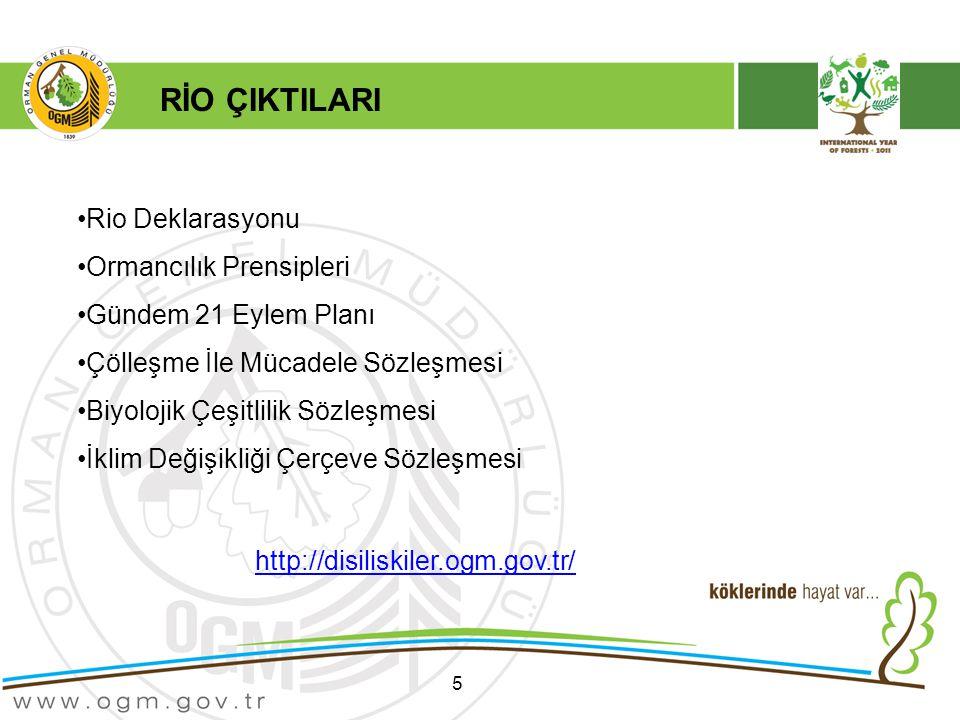 RİO ÇIKTILARI Rio Deklarasyonu Ormancılık Prensipleri