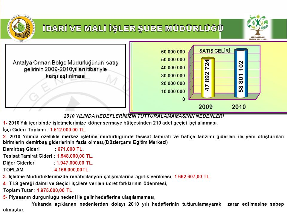 2010 YILINDA HEDEFLERİMİZİN TUTTURALAMAMASININ NEDENLERİ