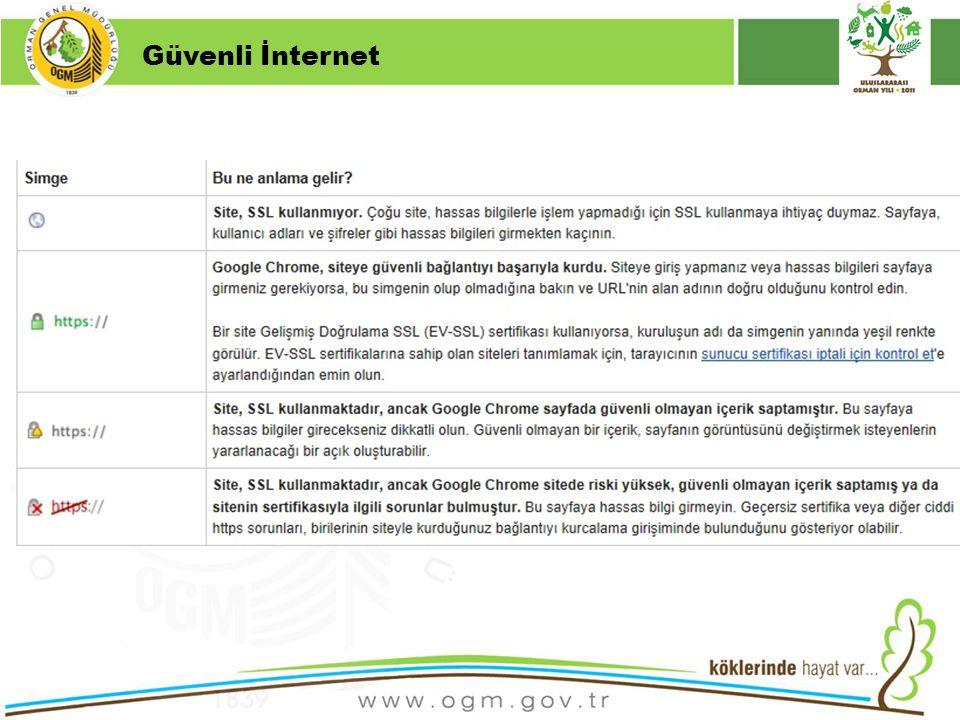 Güvenli İnternet Kurumsal Kimlik 16/12/2010
