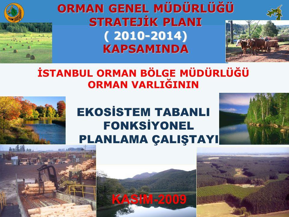 KASIM-2009 ORMAN GENEL MÜDÜRLÜĞÜ STRATEJİK PLANI ( 2010-2014)