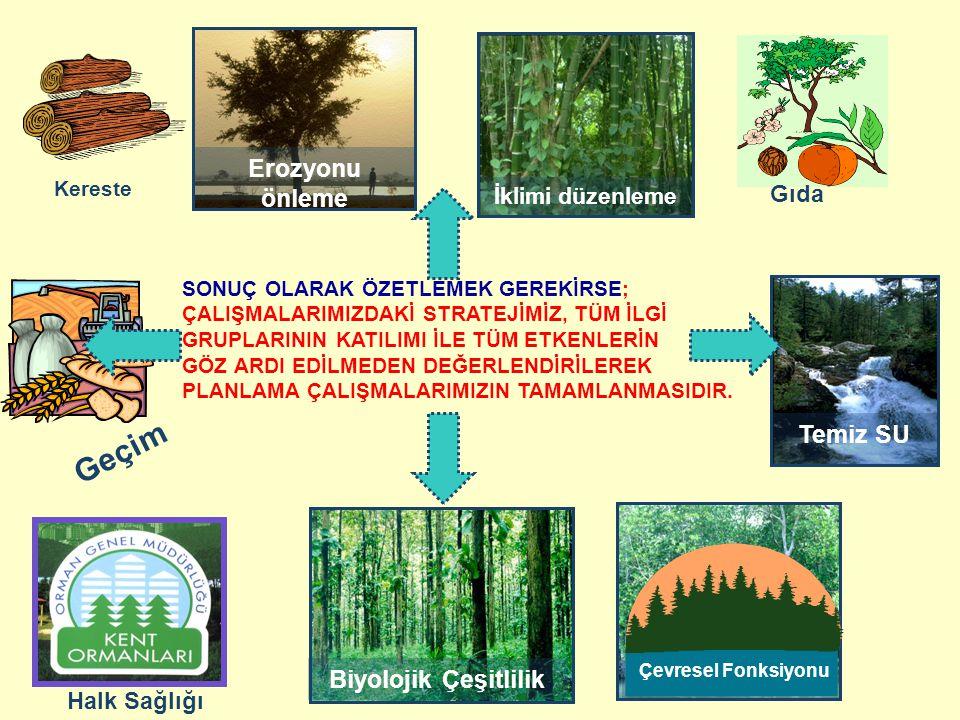 Geçim Erozyonu önleme Temiz SU Biyolojik Çeşitlilik Ucuz enerji Gıda