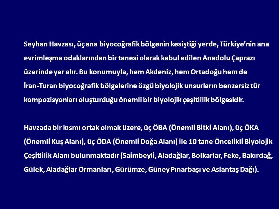 Seyhan Havzası, üç ana biyocoğrafik bölgenin kesiştiği yerde, Türkiye'nin ana evrimleşme odaklarından bir tanesi olarak kabul edilen Anadolu Çaprazı üzerinde yer alır.