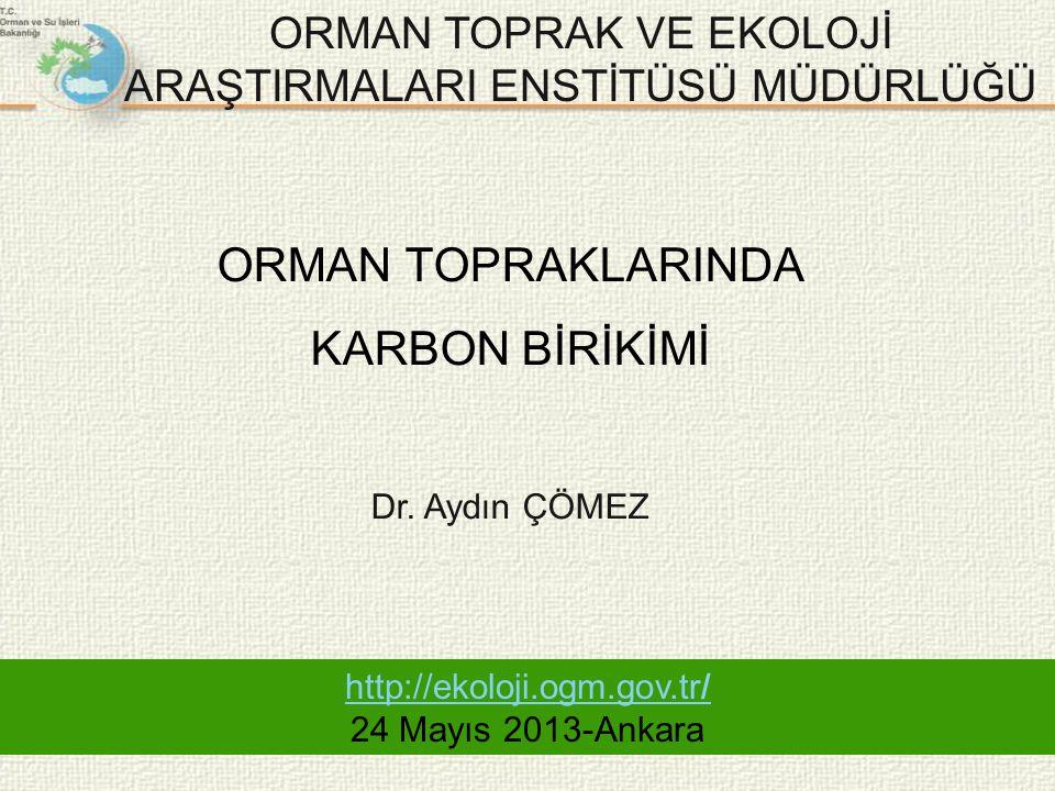 ORMAN TOPRAKLARINDA KARBON BİRİKİMİ