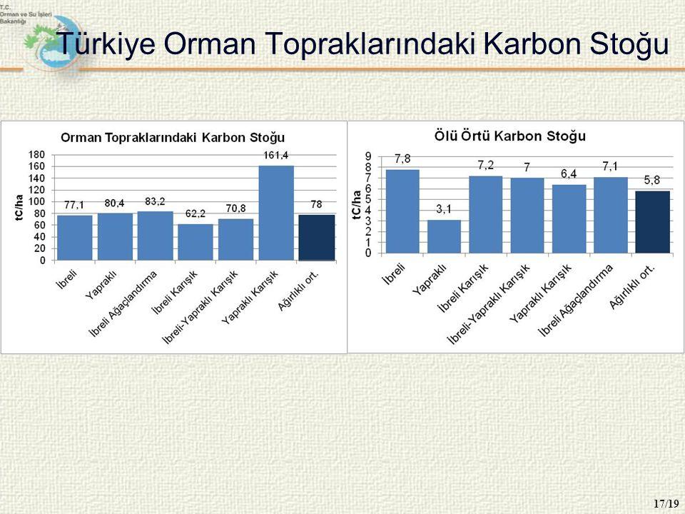 Türkiye Orman Topraklarındaki Karbon Stoğu