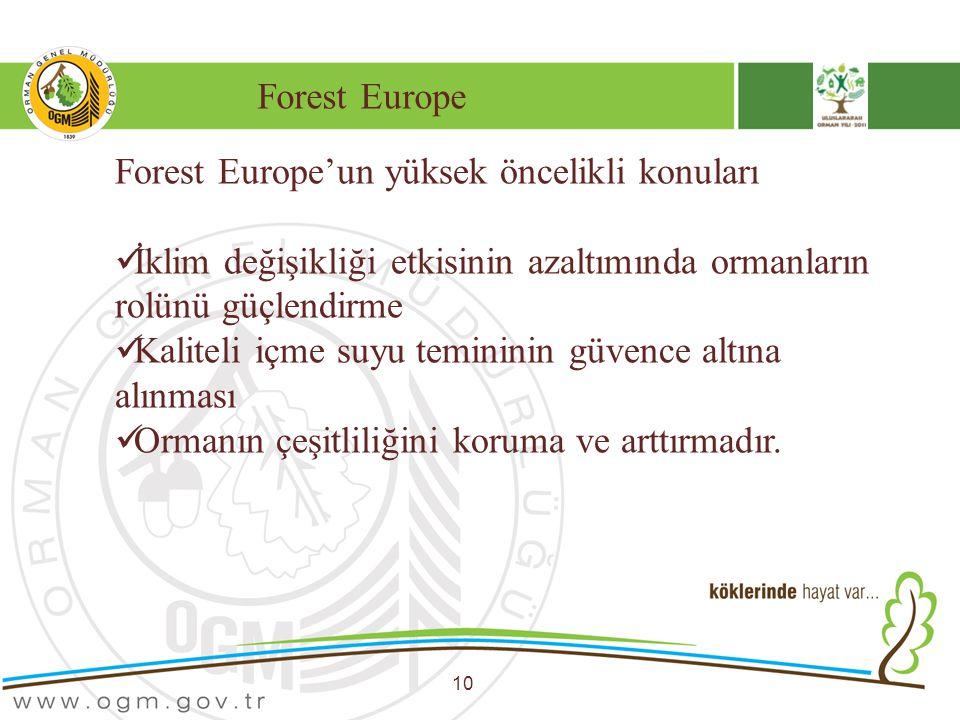 Forest Europe'un yüksek öncelikli konuları